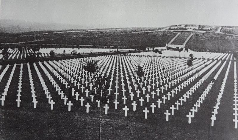 Wieviel Tote Im 1. Weltkrieg